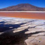 bolivia-giants-findings